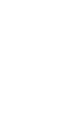 Fox and Anchor